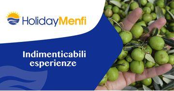 Offerta weekend Menfi: raccolta olive in famiglia